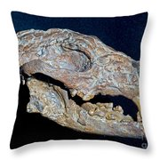 Ancient Coyote Throw Pillow