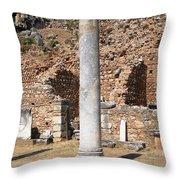 Ancient Delphi Throw Pillow