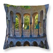 Ancient Dreams Throw Pillow