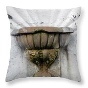 Ancient Fountain Throw Pillow