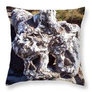 Ancient Gnarled Driftwood - Oregon Beach Throw Pillow