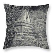 Ancient Gravesite Throw Pillow
