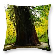 Ancient Old Growth Throw Pillow
