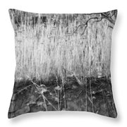 Ancient Sagebrush 2 Throw Pillow
