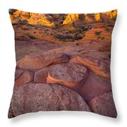 Ancient Seabed Throw Pillow