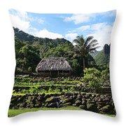 Ancient Taro Gardens In Kauai Throw Pillow