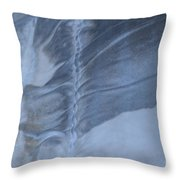 Ancient Upholstery Throw Pillow