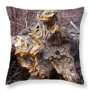 Ancient Warrior Throw Pillow