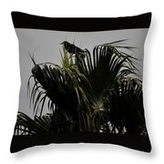 And A Crow Oh Oh In A Palm Tree Throw Pillow