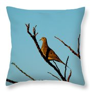 And A Dove In A Tree Throw Pillow