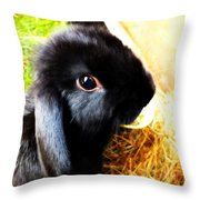 And? Throw Pillow