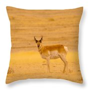 And Just Who Are You Throw Pillow