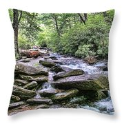 ...and The Creek Don't Rise Throw Pillow