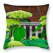 And The Livin' Is Easy Throw Pillow