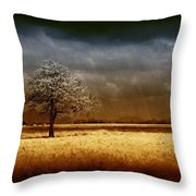 And The Rains Came Throw Pillow