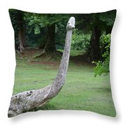 And The Serpent Was Swallowed Up Throw Pillow