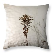 And Then The Sun Throw Pillow