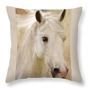 Andalusian Dreamer Throw Pillow