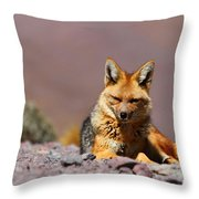 Andean Fox Portrait Throw Pillow