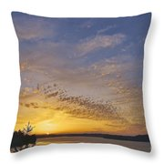 Anderson Island Sunset Throw Pillow