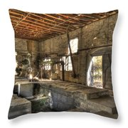 Anderson Quarry-2 Throw Pillow