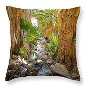 Andreas Creek In Andreas Canyon In Indian Canyons-ca Throw Pillow