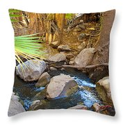 Andreas Creek In Indian Canyons-ca Throw Pillow