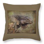 Anegada Ground Iguana - Houston Zoo Throw Pillow