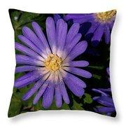 Anemone Blanda Blue Throw Pillow