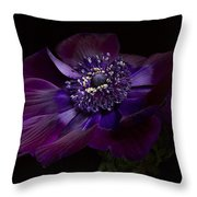 Anemone Coronaria De Caen Throw Pillow