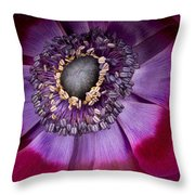 Anemone Coronaria  Macro Throw Pillow