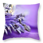 Anemone Flower Close Up Throw Pillow