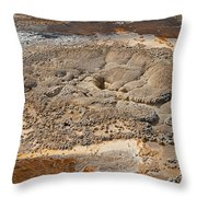 Anemone Geyser In Upper Geyser Basin Throw Pillow