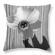 Angel Eyes Narcissus Throw Pillow