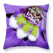 Angel Face Blue - With Extra Petals And 3 Stamen Throw Pillow