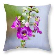 Angel Face Flower - Summer Snapdragon Throw Pillow