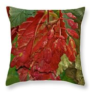 Angel On The Wing Throw Pillow