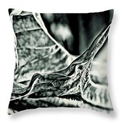Angel Wing Variation Black White Throw Pillow