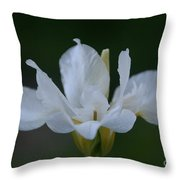 Angel Wings Iris Throw Pillow
