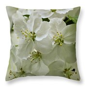 Angelic Blossom Throw Pillow