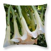 Angel's Trumpet Flower Throw Pillow