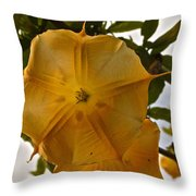 Angel's Trumpets Throw Pillow