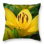 Angie's Asiatic Throw Pillow