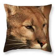 Angle Of Pursuit Throw Pillow