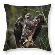 Angle's Wings Throw Pillow