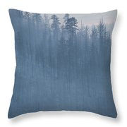 Angora Fire In South Lake Tahoe, Ca Throw Pillow