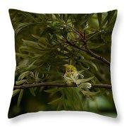 Angry Bird - Oriental White-eye Throw Pillow