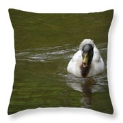 Angry Crested Duck Throw Pillow
