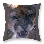 Angry Florida Panther Throw Pillow