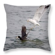 Angry Gull 2 Throw Pillow